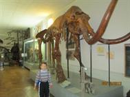 Музей природы, 08.12.2013