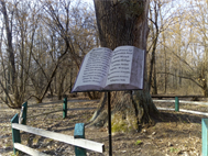 Марковецкий дуб, 24.03.19